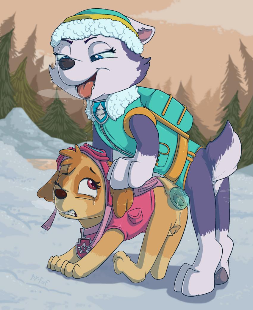 patrol is paw from tracker breed what Wagaya no liliana san the animation